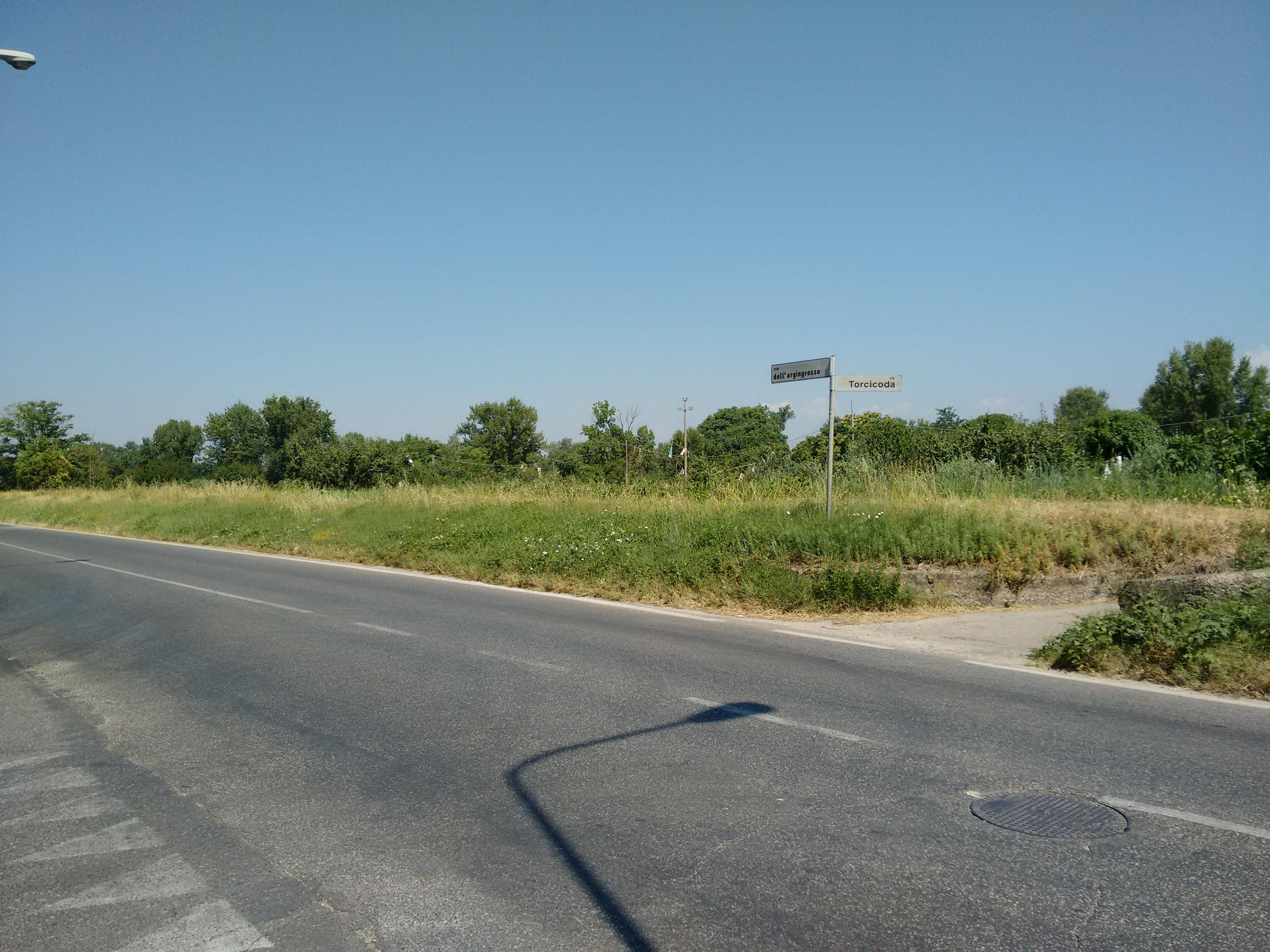 argingrosso (4)