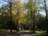 Parco di Villa Strozzi al Boschetto