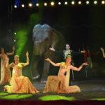 nelly-orfei-elefante