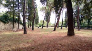 giardino dello strozzzino (2)