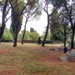 giardino dello strozzzino (3)