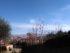 panorama monte oliveto