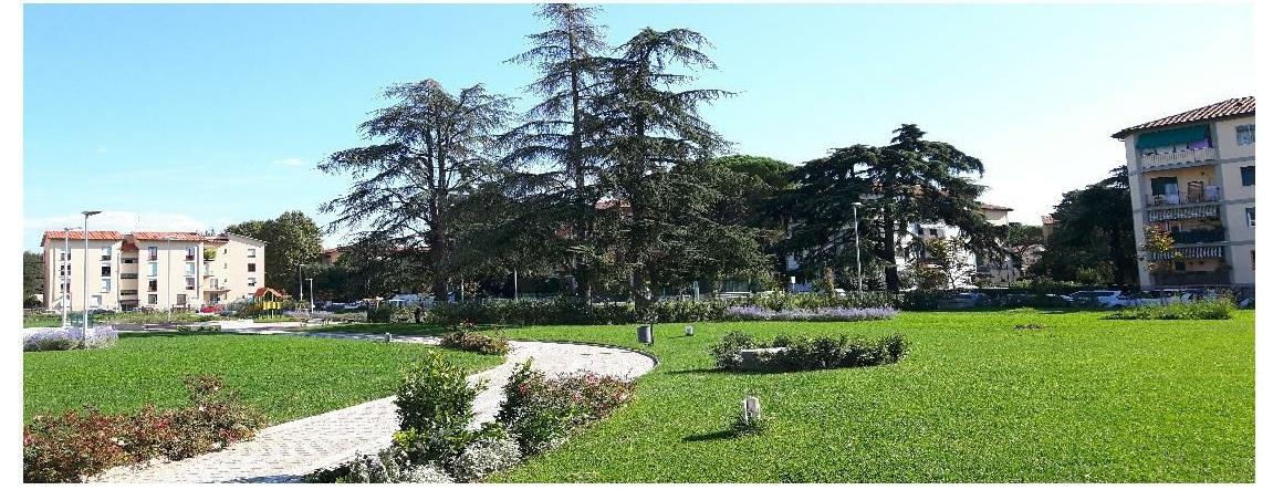 giardino quadrilatero verde