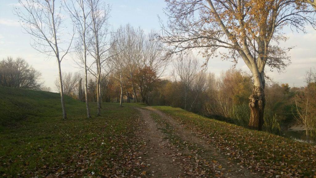 trekking urbano firenze percorso sentiero greve arno (17)