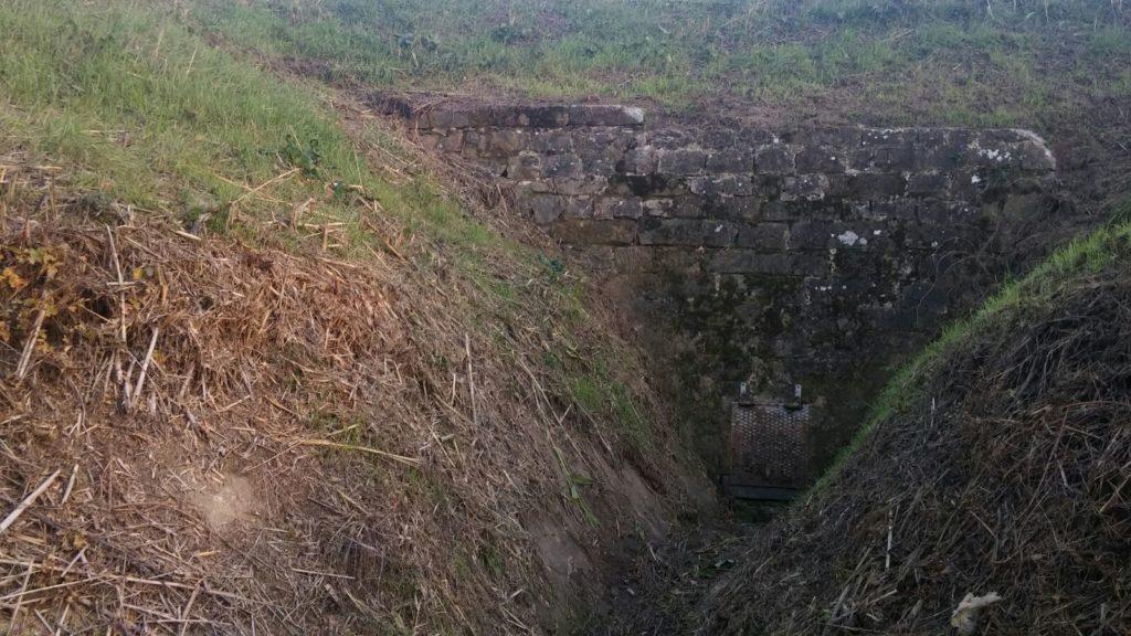 trekking urbano firenze percorso sentiero greve arno (2)