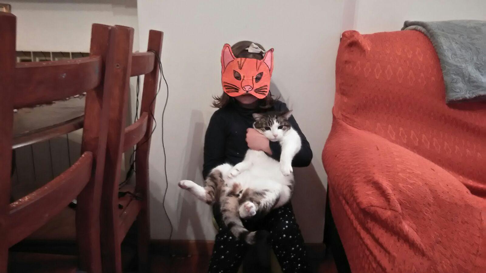 lucky ed elettra gatto isolotto 2018