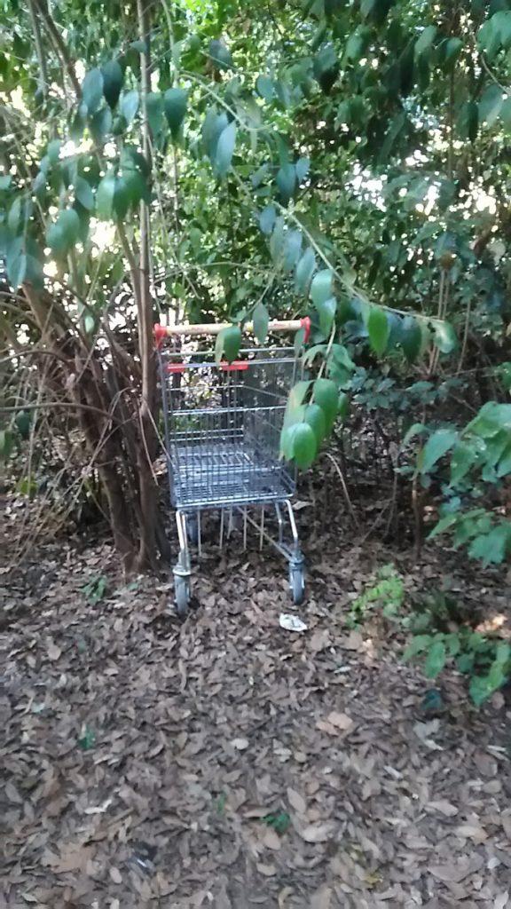 C'è persino un carrello della spesa. Probabilmente è servito a qualche senza fissa dimora  per trasportare le sue cose. Nella stessa area infatti  sono state viste persone dormire.