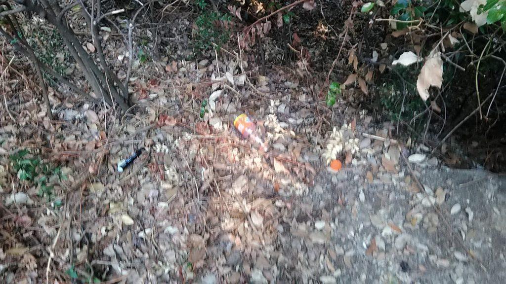I rifiuti che si trovano sparpagliatinel bosco sono tra i più vari: l bottigliette sono un classico, ma persino un pennarello