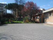 asilo niccolini 2 2013-04-07 12.01.18