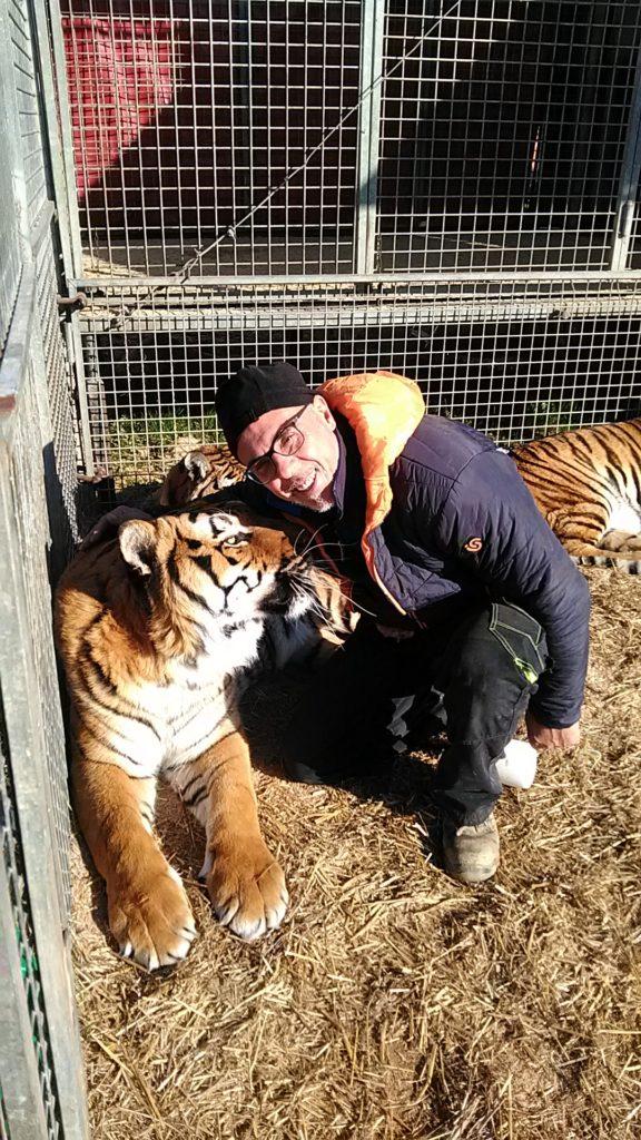 Circo Medrano addestratore Giordano Caveagna e le sue tigri (7)