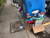 rifiuti fuori dai cassonetti via del pozzino irrisolta 2