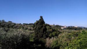villa dei cipressi bellosguardo (3)