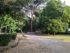 Cascine giardino via della catena (3)