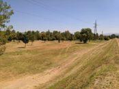parco dell'argingrosso