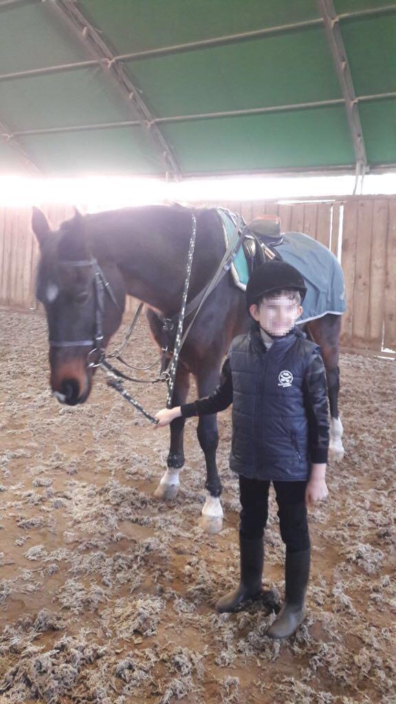 centro equestre fiorentino bambino disabile ippoterapia