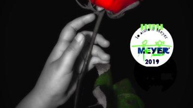 Un fiore per il Meyer, locandina evento