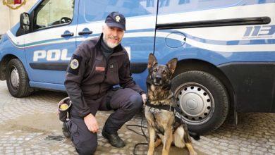 Mia cane poliotto unità cinofile polizia antidroga