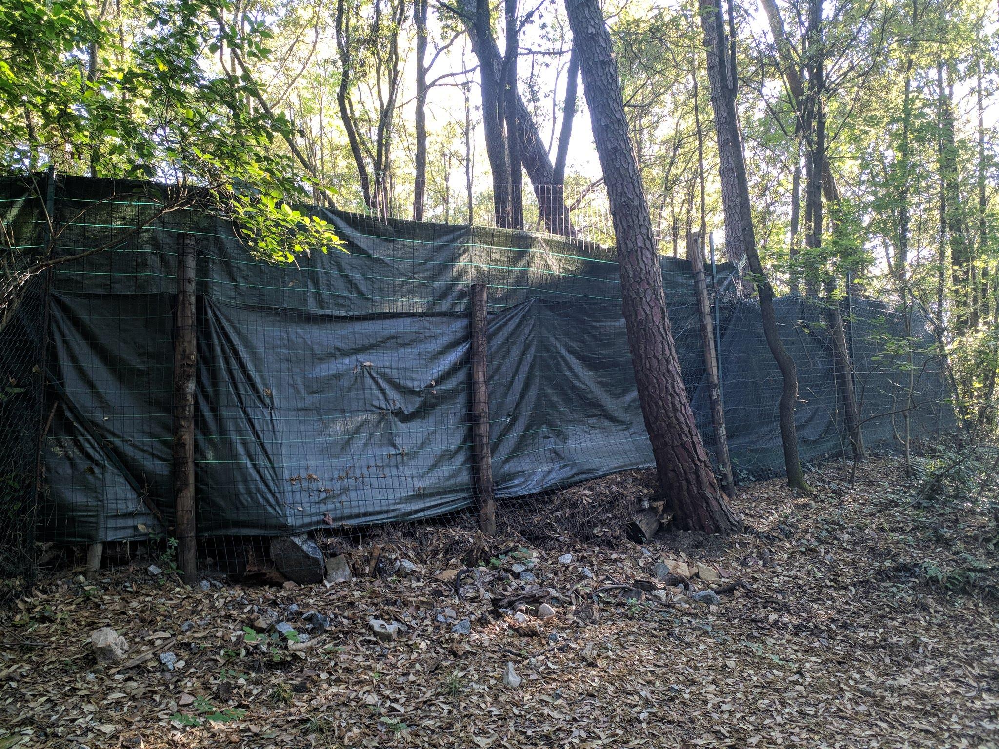 Una rete esclude un'ampia porzione del parco, interdetta al pubblico e mal manutenuta