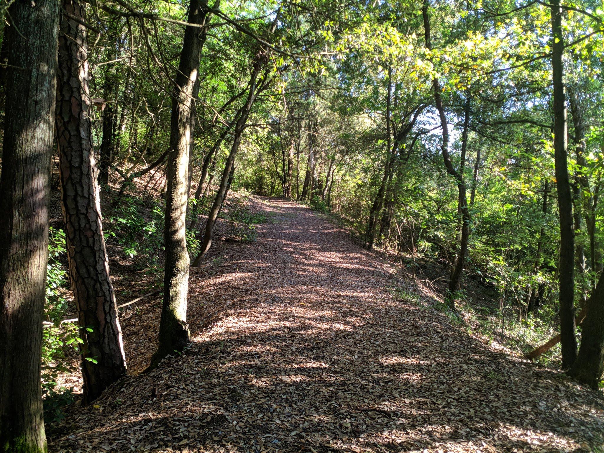 Il parco ha una fitta rete di sentieri immersi nella natura