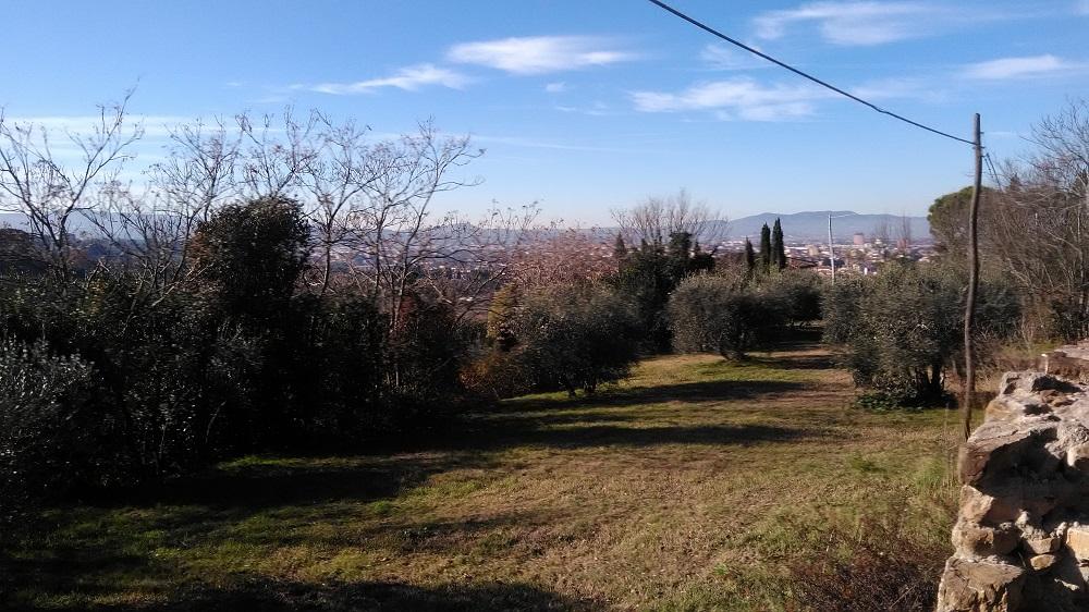 Il Panorama da via di San Vito, sulle colline di Bellosguardo: campagna a due passi dal centro.