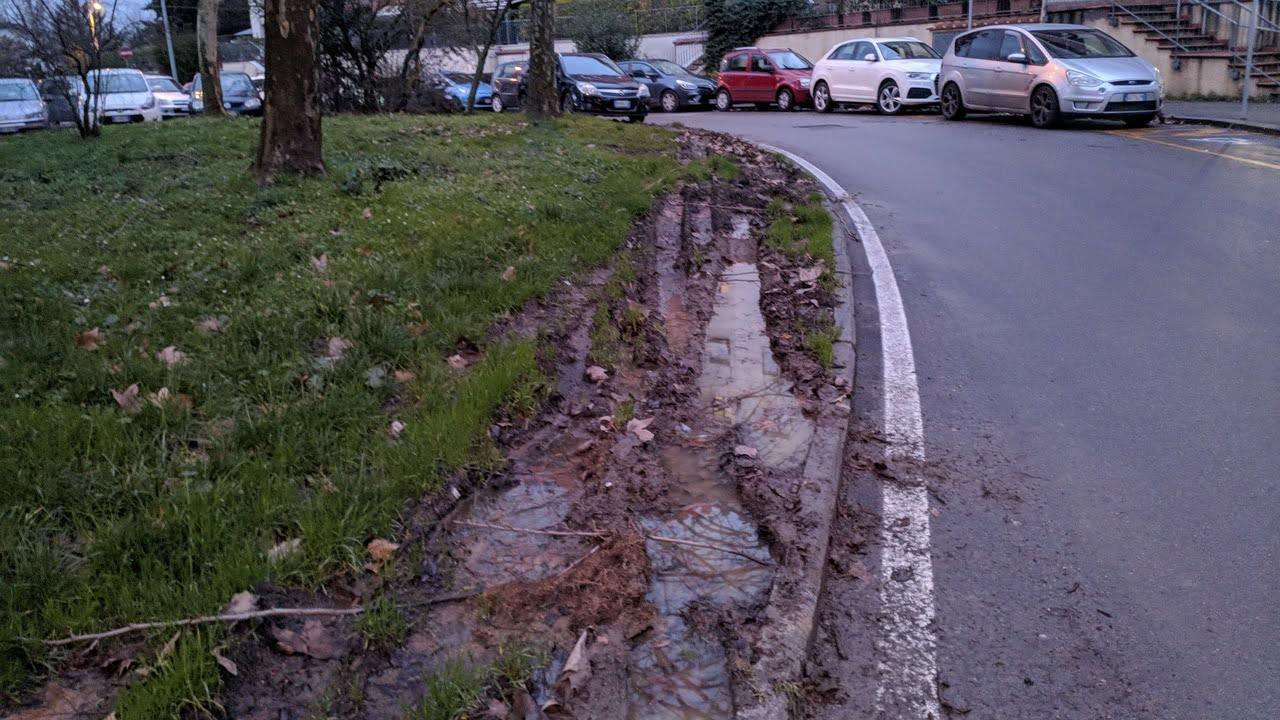 Giardini rovinati dalle macchine che ci parcheggiano abusivamente