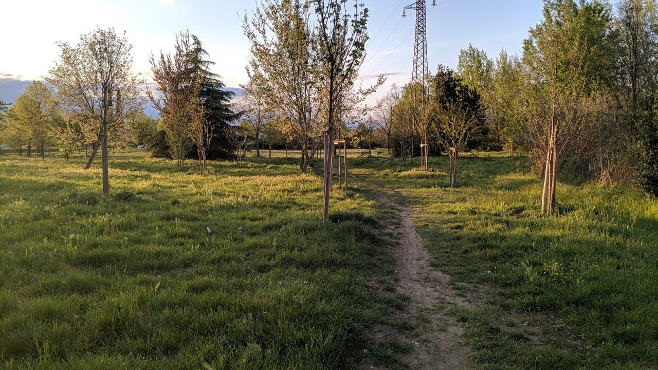 Il sentiero che va verso il laghetto, ormai diventata una pista di pusher