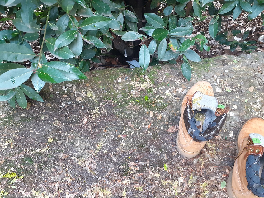 parco dell'argingrosso degrado (2)
