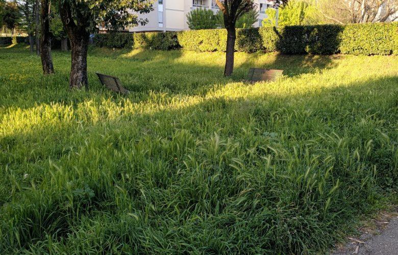giardini via gubbio argingrosso