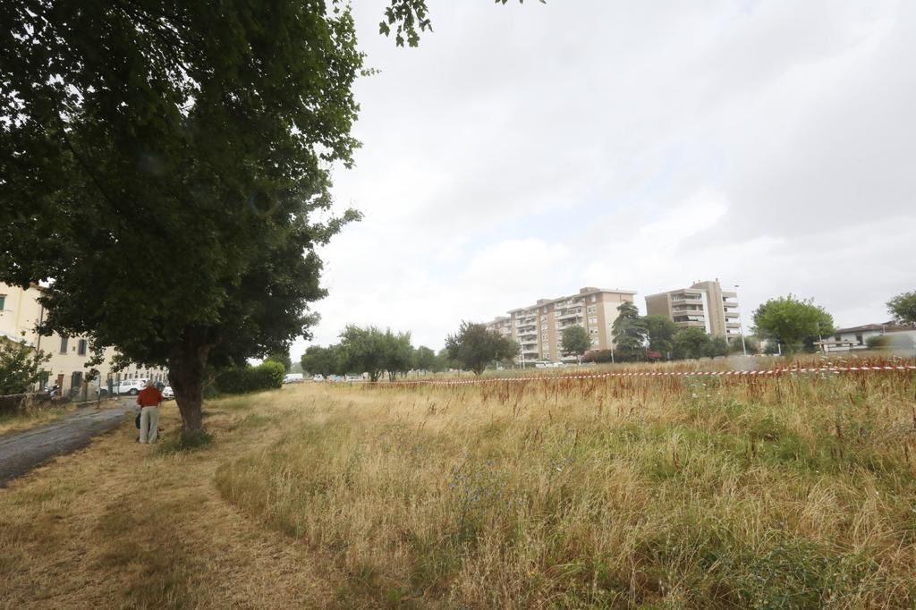 parco San bartolo a Cintoia Cavallaccio 4